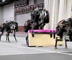 Δείτε ένα απίστευτο ρομπότ-τσιτάχ [video]