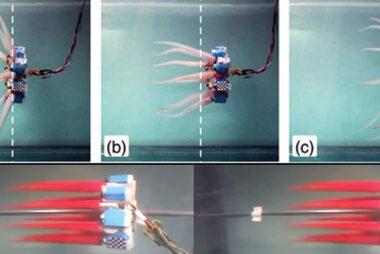 """""""Έλληνες επιστήμονες κατασκεύασαν χταπόδι ρομπότ"""" (ΒΙΝΤΕΟ)"""